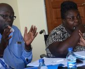 COMMITTEES GRILL CECs AND CHIEF OFFICERS ON SUPPLEMENTARY BUDGET ESTIMATES